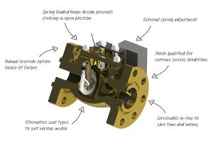 IMI_TrufloMarine_Swing_Check_Valves_4